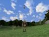 fliegender_albionier